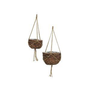 Brown Hyacinth Hanging Basket