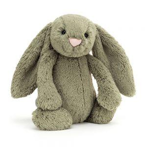 Medium Bashful Bunny Fern
